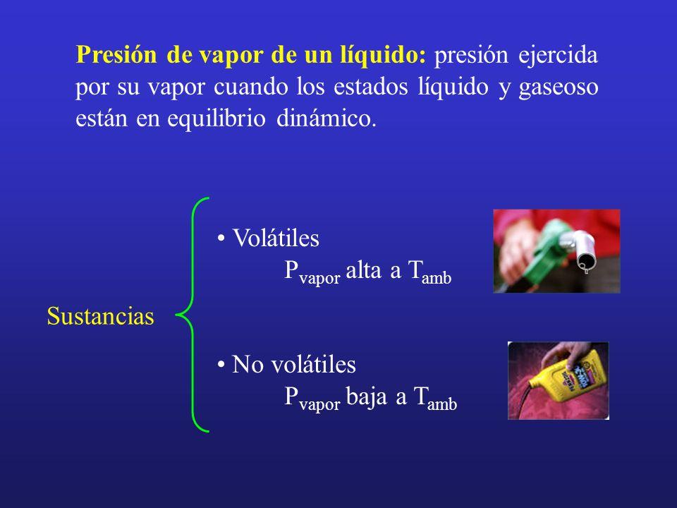 Presión de vapor de un líquido: presión ejercida por su vapor cuando los estados líquido y gaseoso están en equilibrio dinámico.