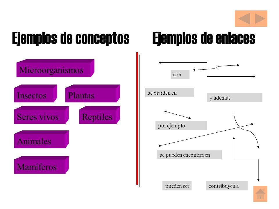 Ejemplos de conceptos Ejemplos de enlaces Microorganismos Insectos