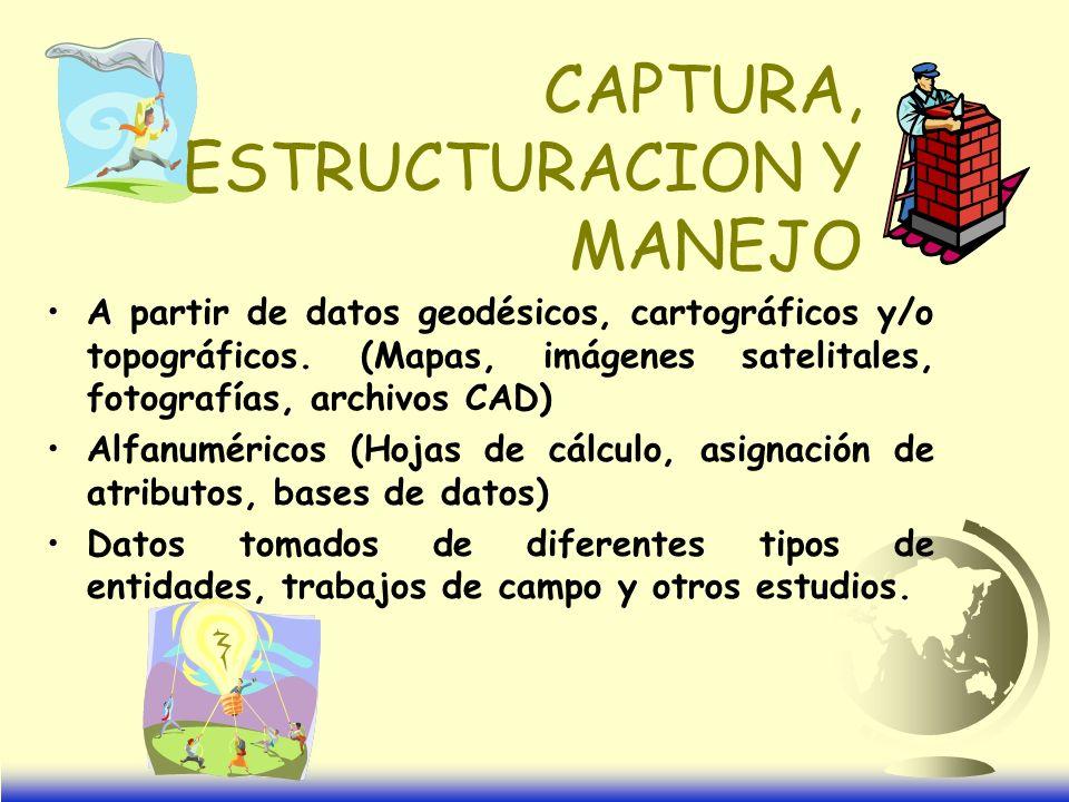 CAPTURA, ESTRUCTURACION Y MANEJO
