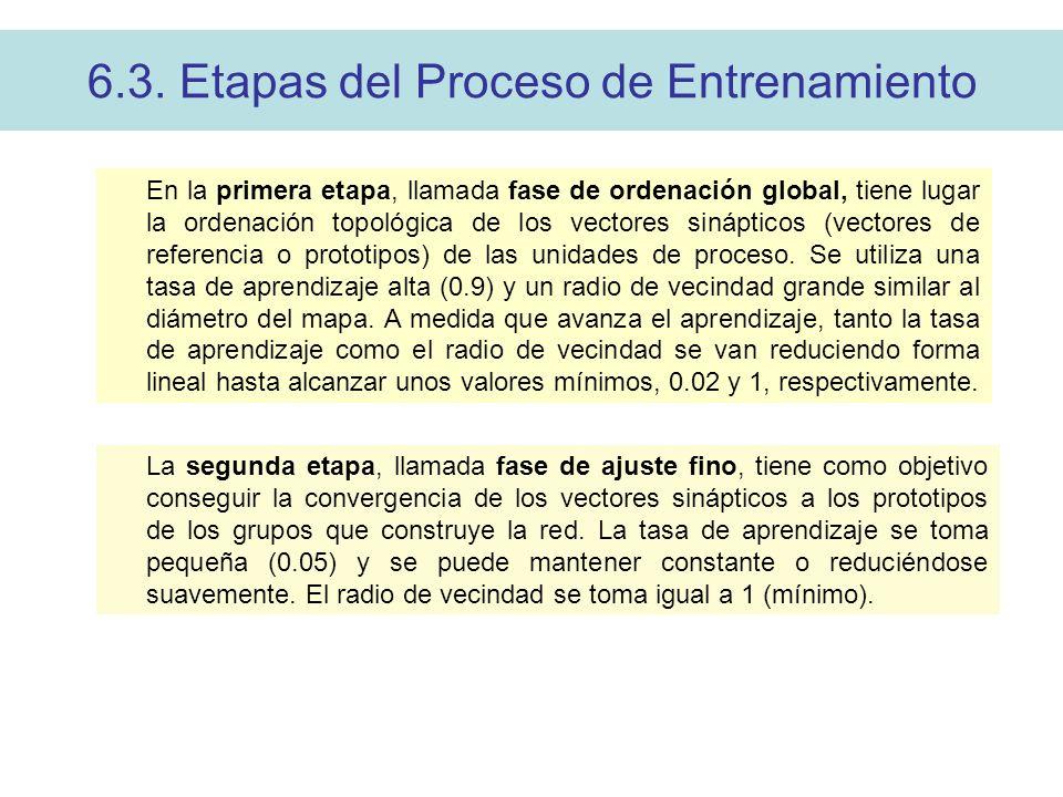 6.3. Etapas del Proceso de Entrenamiento