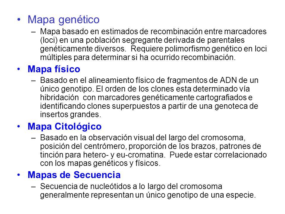 Mapa genético Mapa físico Mapa Citológico Mapas de Secuencia