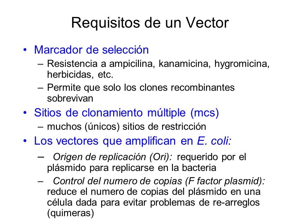 Requisitos de un Vector