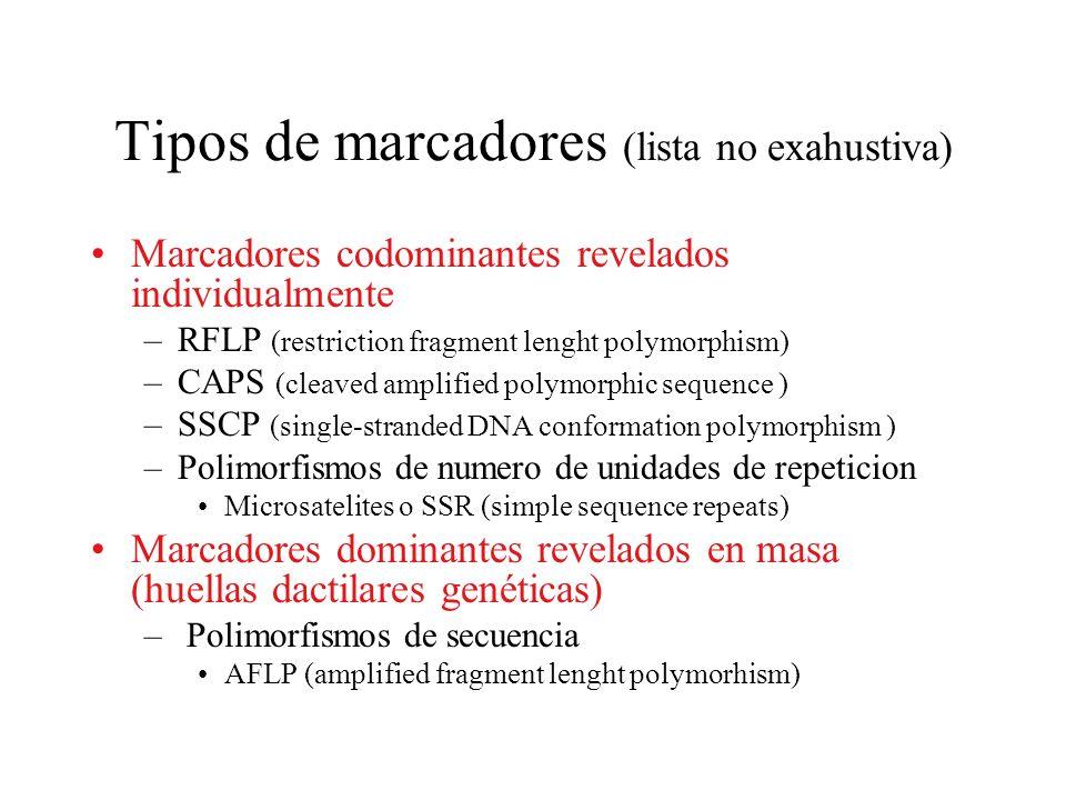 Tipos de marcadores (lista no exahustiva)