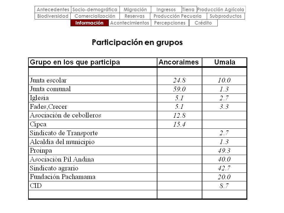 Participación en grupos
