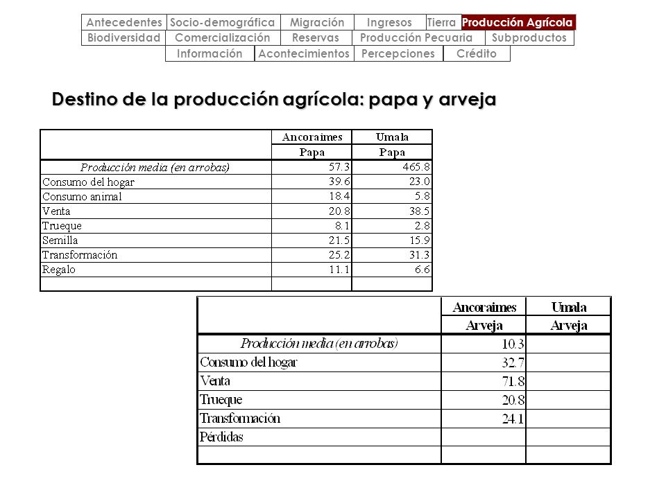 Destino de la producción agrícola: papa y arveja