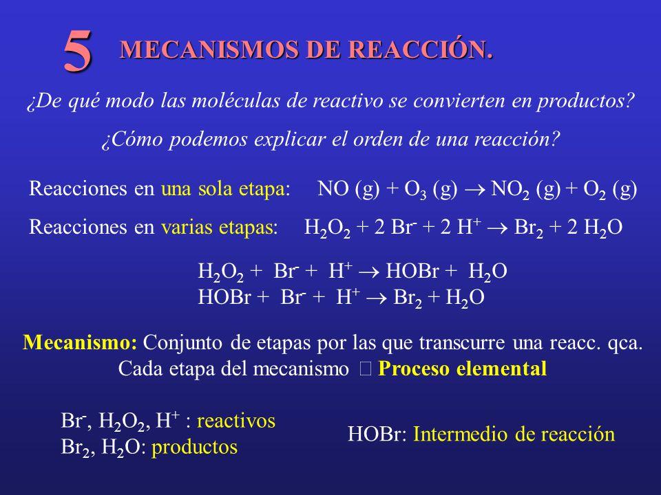 5 MECANISMOS DE REACCIÓN.