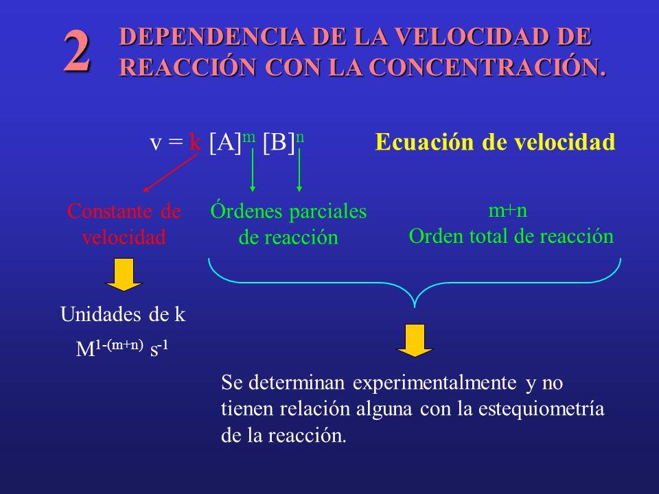 2 DEPENDENCIA DE LA VELOCIDAD DE REACCIÓN CON LA CONCENTRACIÓN.