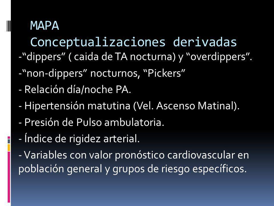 MAPA Conceptualizaciones derivadas