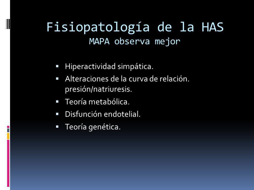 Fisiopatología de la HAS MAPA observa mejor
