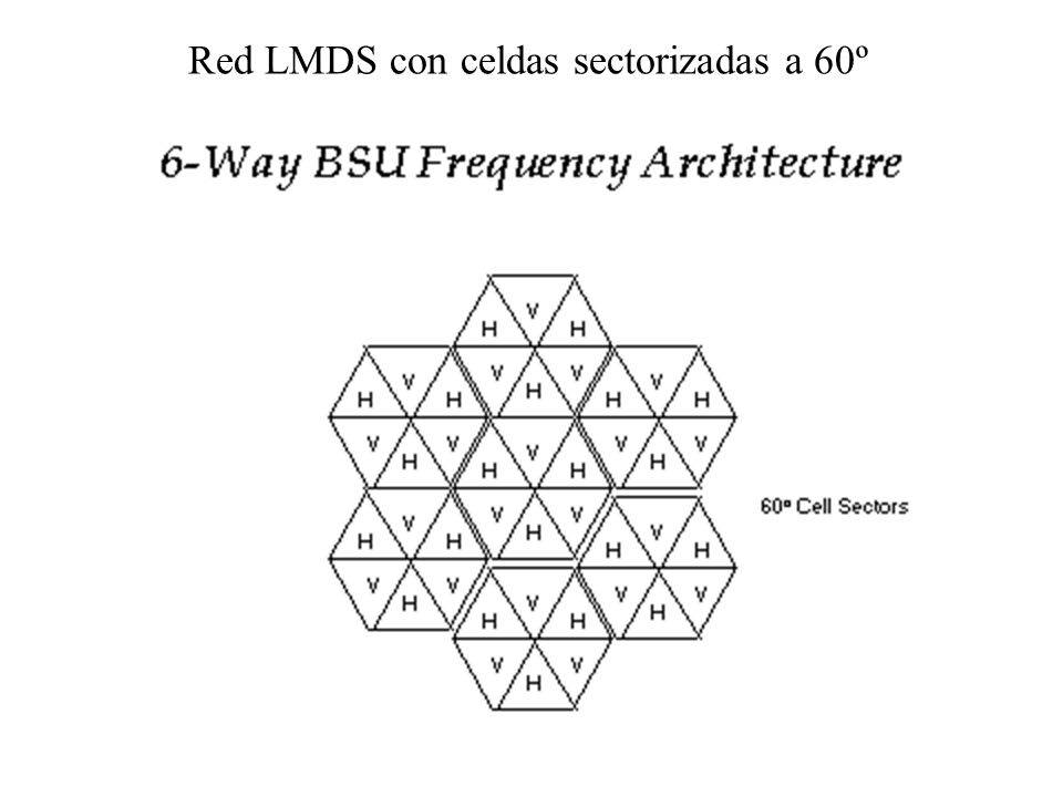 Red LMDS con celdas sectorizadas a 60º