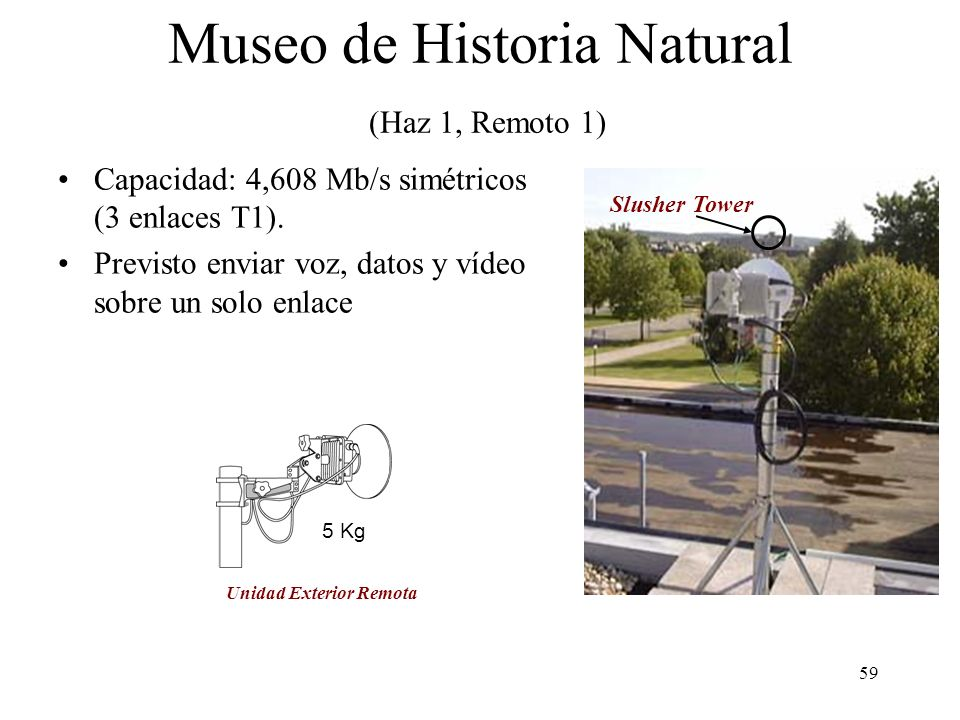 Museo de Historia Natural (Haz 1, Remoto 1)