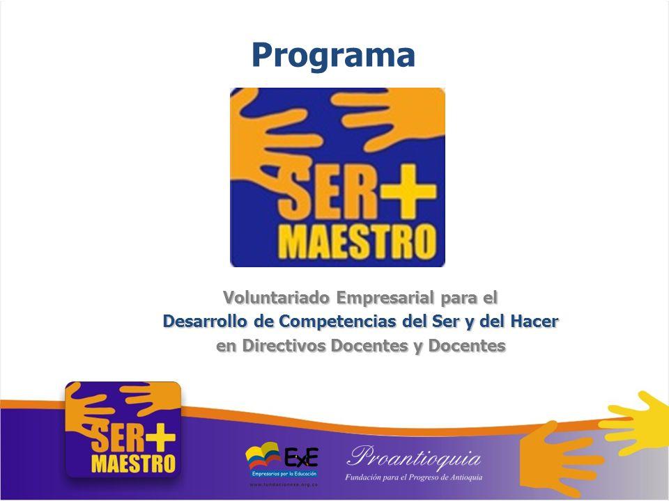 Programa Voluntariado Empresarial para el