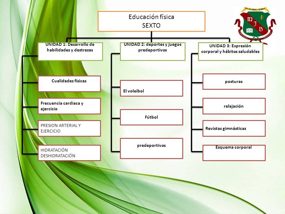 Educación física SEXTO UNIDAD 1: Desarrollo de habilidades y destrezas