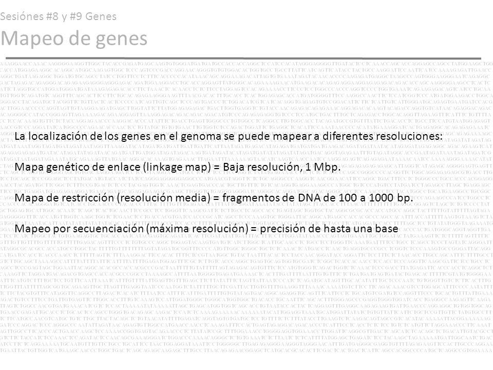 Sesiónes #8 y #9 Genes Mapeo de genes