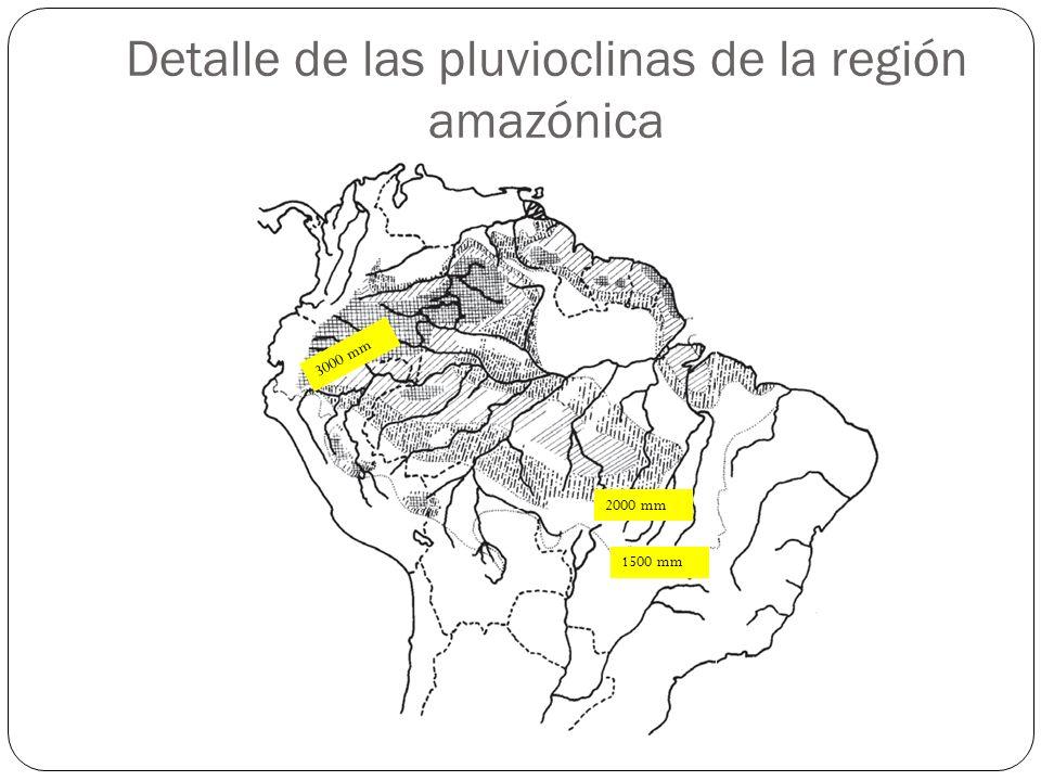 Detalle de las pluvioclinas de la región amazónica