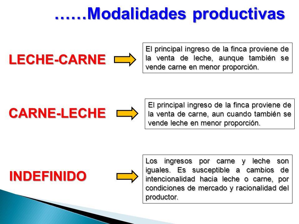 ……Modalidades productivas