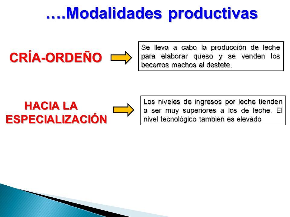 ….Modalidades productivas HACIA LA ESPECIALIZACIÓN