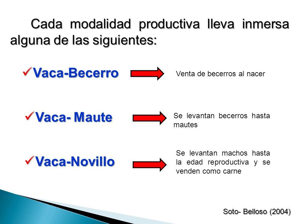 Cada modalidad productiva lleva inmersa alguna de las siguientes: