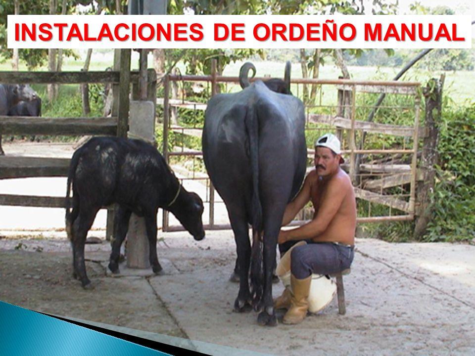 INSTALACIONES DE ORDEÑO MANUAL