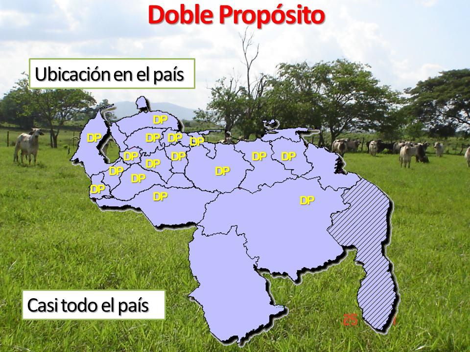 Doble Propósito Ubicación en el país Casi todo el país DP DP DP DP DP