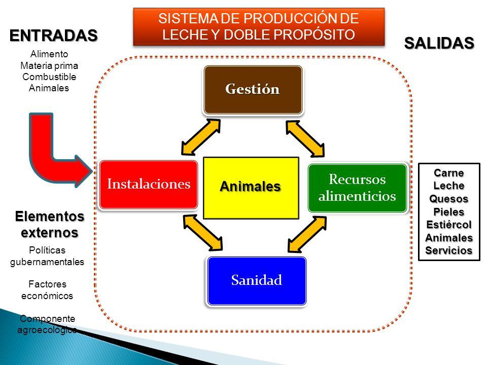 ENTRADAS SALIDAS SISTEMA DE PRODUCCIÓN DE LECHE Y DOBLE PROPÓSITO