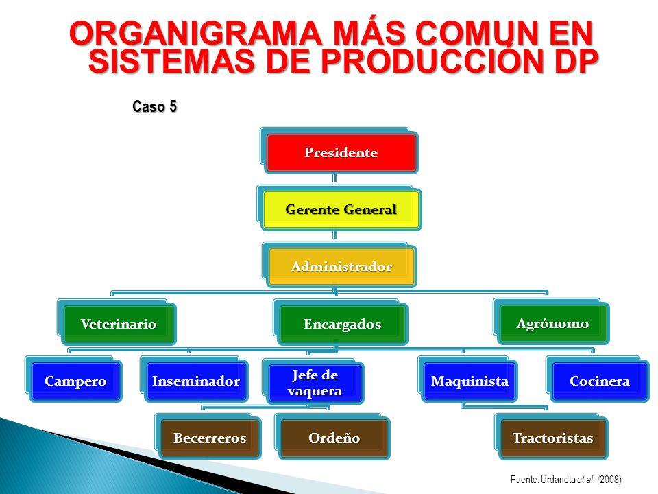ORGANIGRAMA MÁS COMUN EN SISTEMAS DE PRODUCCIÓN DP