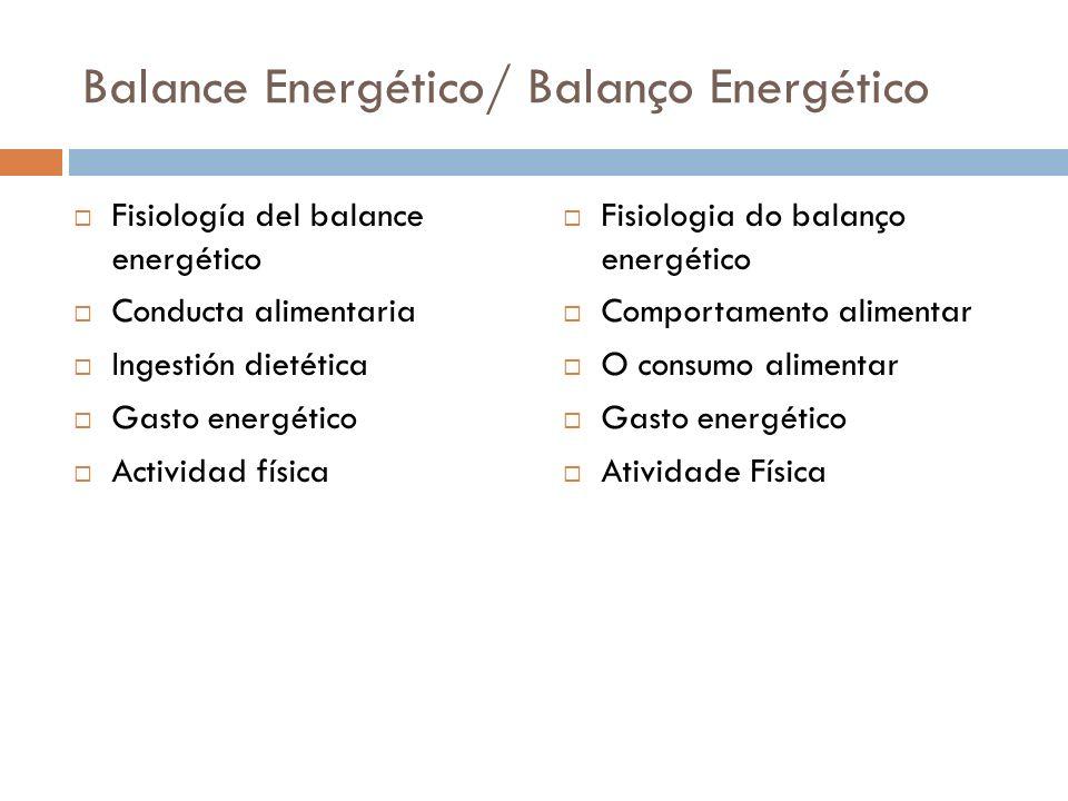 Balance Energético/ Balanço Energético