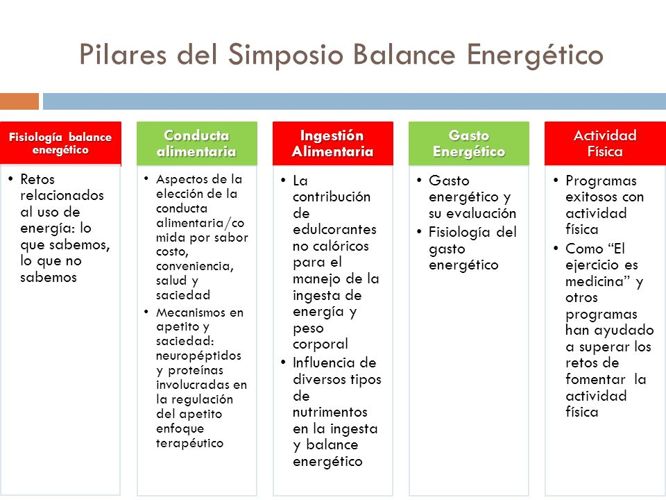 Pilares del Simposio Balance Energético