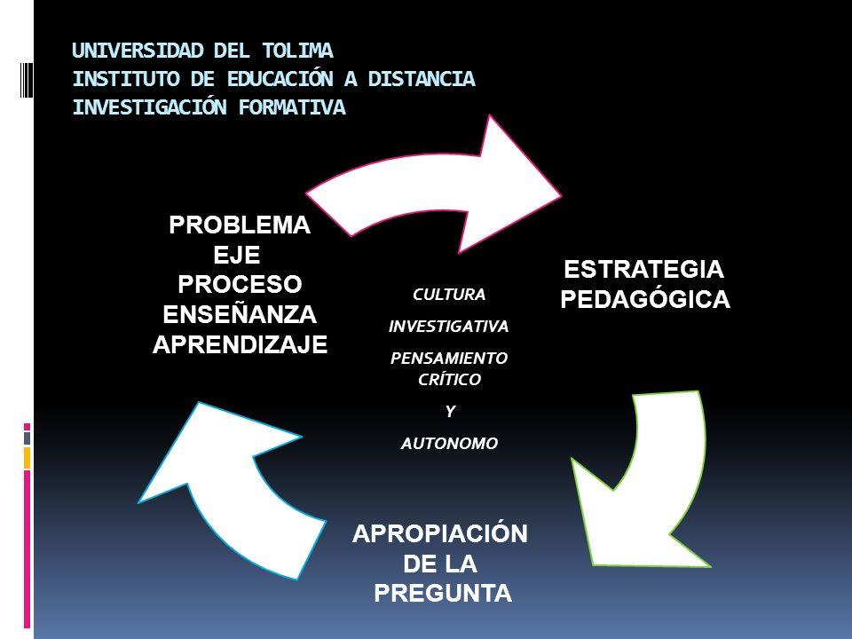 PROBLEMA EJE ESTRATEGIA PROCESO PEDAGÓGICA ENSEÑANZA APRENDIZAJE