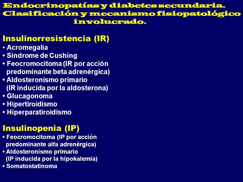 Insulinorresistencia (IR)