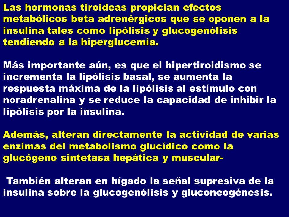 Las hormonas tiroideas propician efectos metabólicos beta adrenérgicos que se oponen a la insulina tales como lipólisis y glucogenólisis tendiendo a la hiperglucemia.
