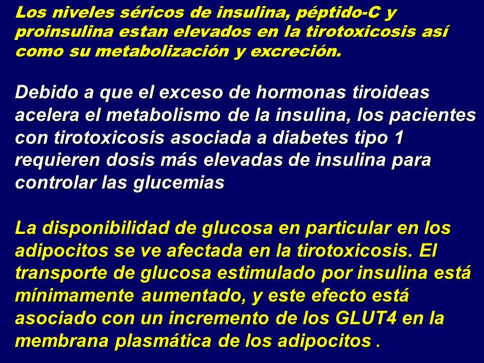 Los niveles séricos de insulina, péptido-C y proinsulina estan elevados en la tirotoxicosis así como su metabolización y excreción.