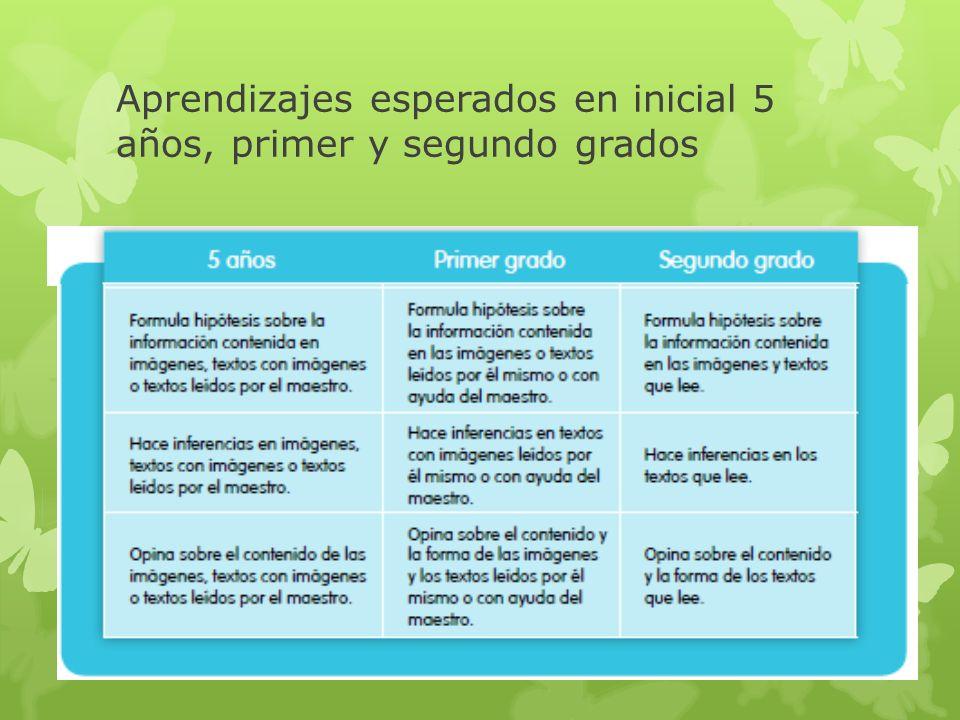 Aprendizajes esperados en inicial 5 años, primer y segundo grados