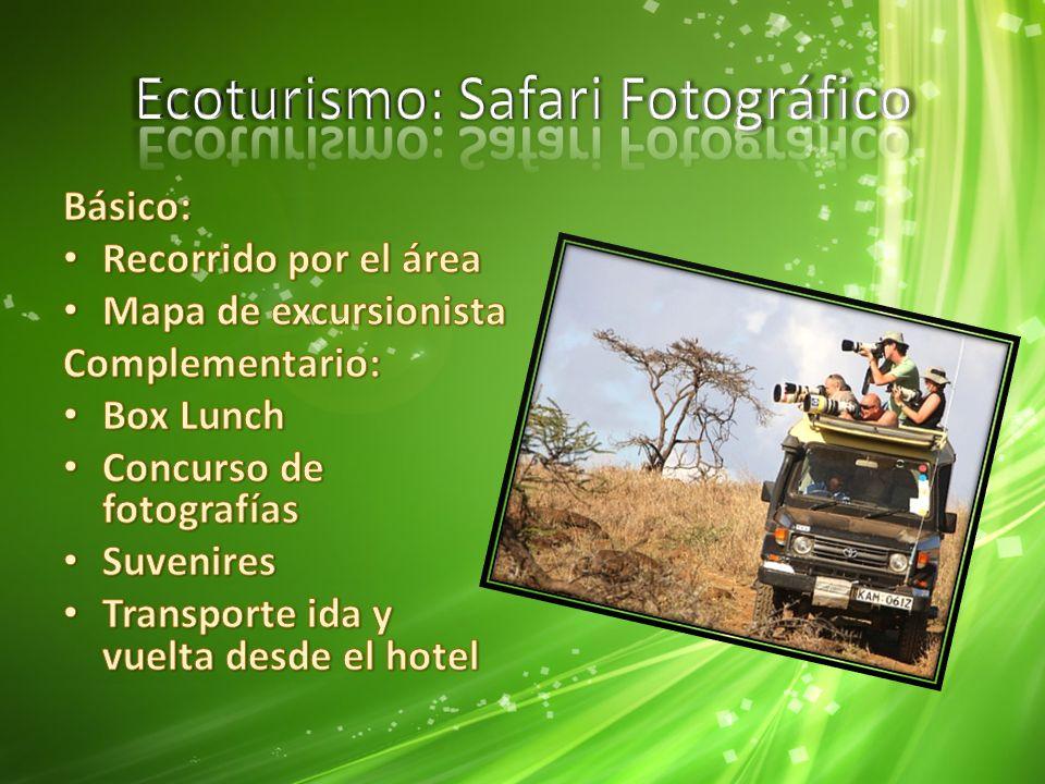 Ecoturismo: Safari Fotográfico