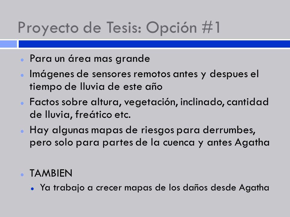 Proyecto de Tesis: Opción #1