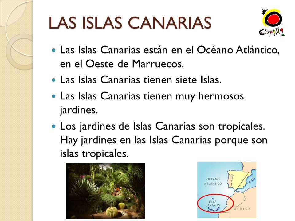 LAS ISLAS CANARIAS Las Islas Canarias están en el Océano Atlántico, en el Oeste de Marruecos. Las Islas Canarias tienen siete Islas.