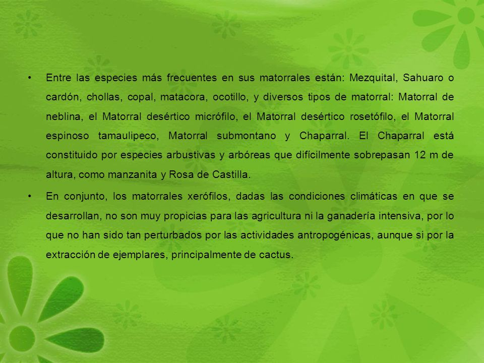 Entre las especies más frecuentes en sus matorrales están: Mezquital, Sahuaro o cardón, chollas, copal, matacora, ocotillo, y diversos tipos de matorral: Matorral de neblina, el Matorral desértico micrófilo, el Matorral desértico rosetófilo, el Matorral espinoso tamaulipeco, Matorral submontano y Chaparral. El Chaparral está constituido por especies arbustivas y arbóreas que difícilmente sobrepasan 12 m de altura, como manzanita y Rosa de Castilla.
