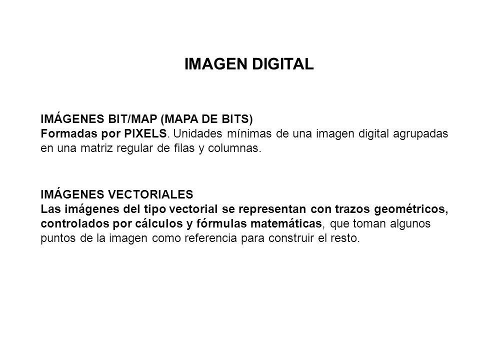 IMAGEN DIGITAL IMÁGENES BIT/MAP (MAPA DE BITS)