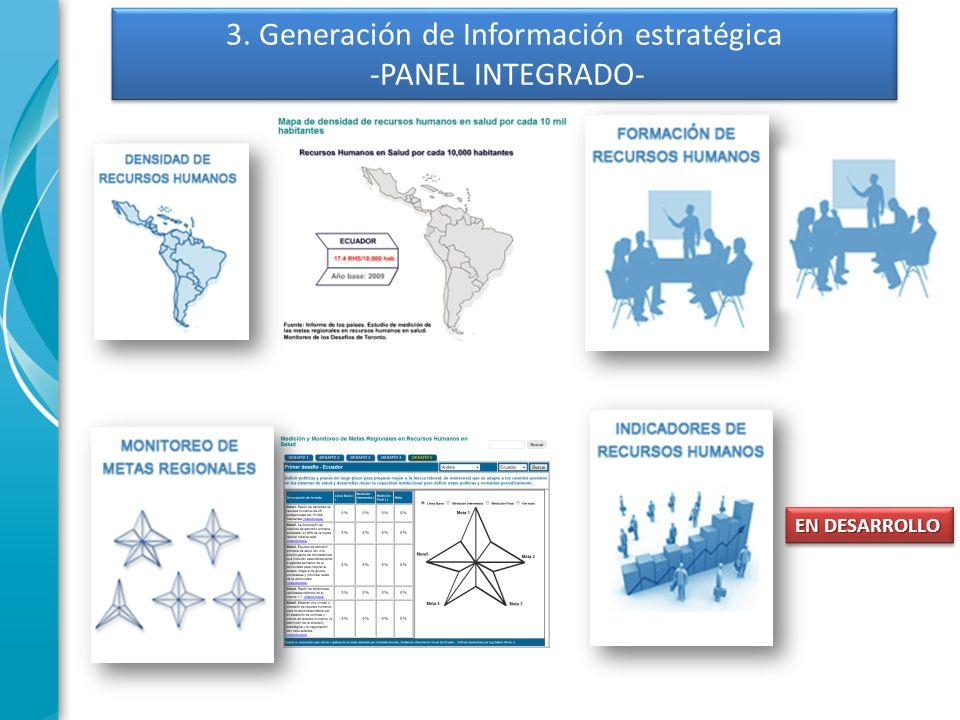 3. Generación de Información estratégica -PANEL INTEGRADO-