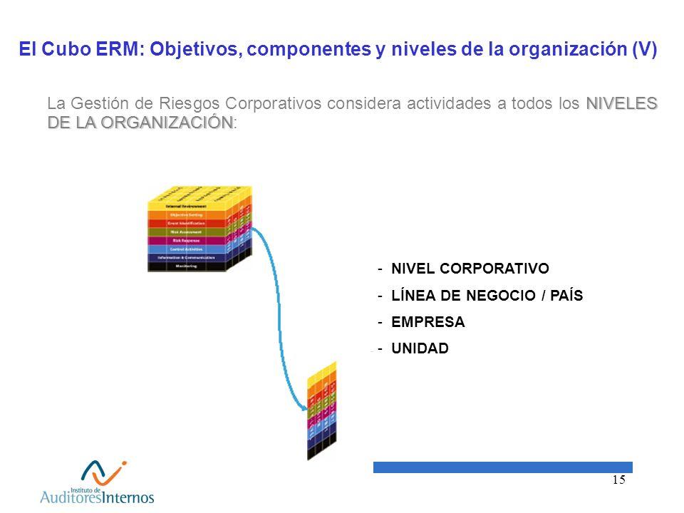El Cubo ERM: Objetivos, componentes y niveles de la organización (V)