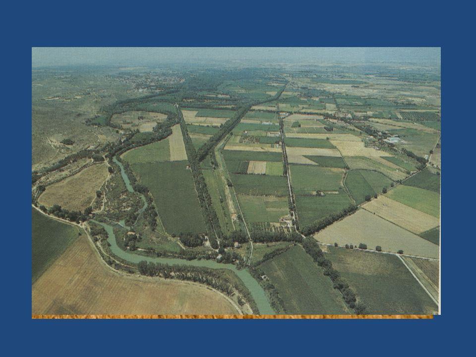 La llanura presenta una composición del terreno menos uniforme que la de la sierra:
