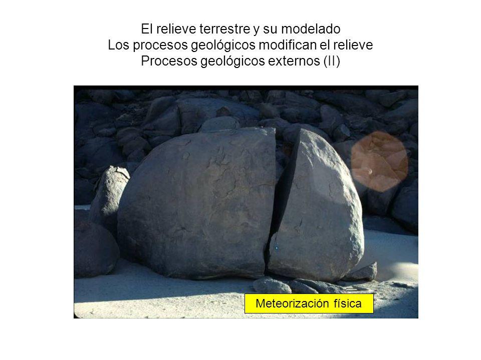 El relieve terrestre y su modelado Los procesos geológicos modifican el relieve Procesos geológicos externos (II)