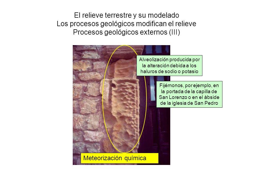 El relieve terrestre y su modelado Los procesos geológicos modifican el relieve Procesos geológicos externos (III)