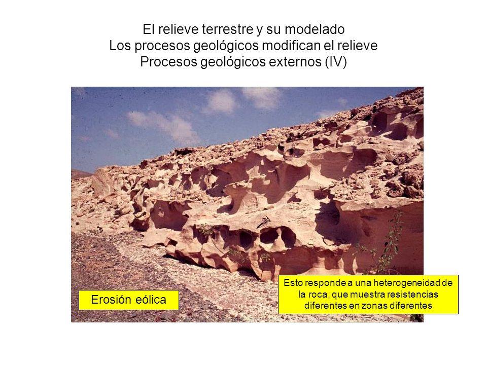 El relieve terrestre y su modelado Los procesos geológicos modifican el relieve Procesos geológicos externos (IV)