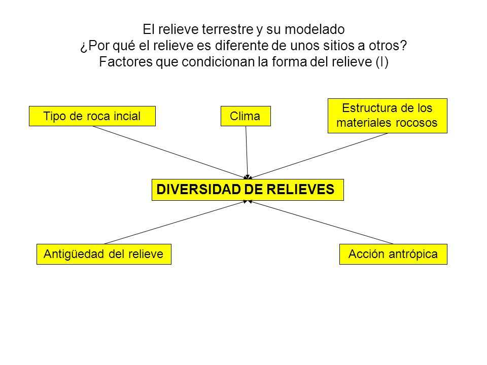 DIVERSIDAD DE RELIEVES