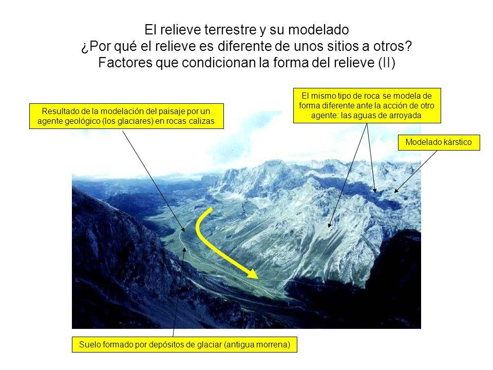 Suelo formado por depósitos de glaciar (antigua morrena)