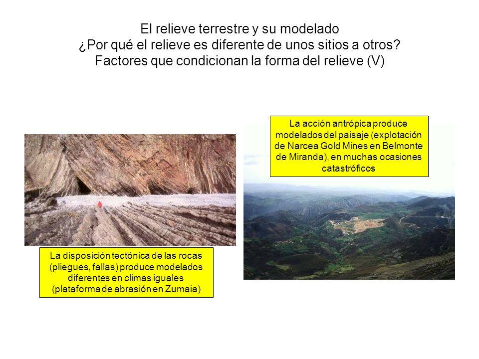 El relieve terrestre y su modelado ¿Por qué el relieve es diferente de unos sitios a otros Factores que condicionan la forma del relieve (V)