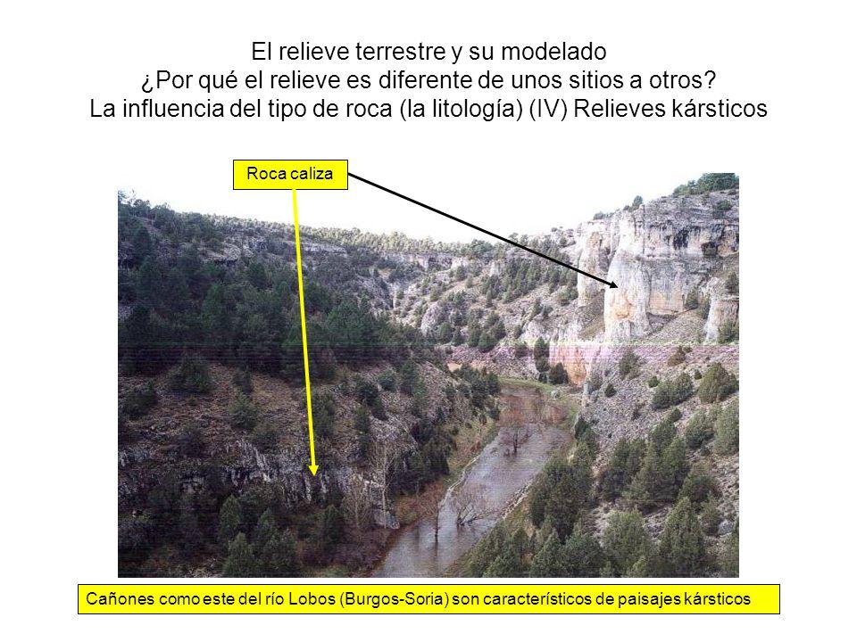 El relieve terrestre y su modelado ¿Por qué el relieve es diferente de unos sitios a otros La influencia del tipo de roca (la litología) (IV) Relieves kársticos