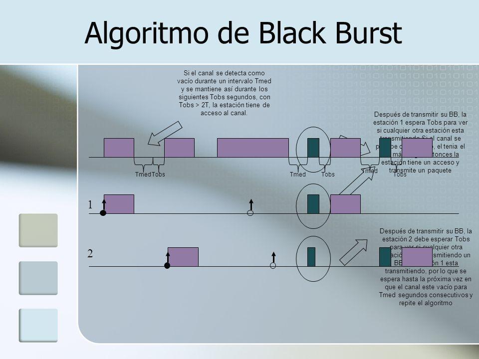 Algoritmo de Black Burst