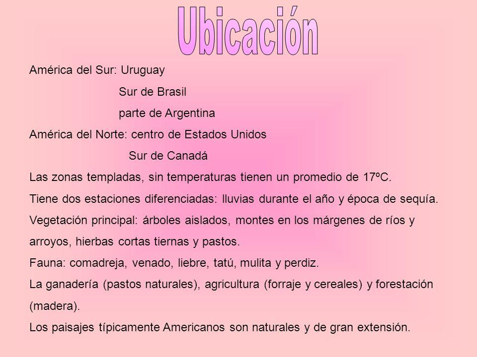Ubicación América del Sur: Uruguay Sur de Brasil parte de Argentina